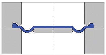 Convoluted diaphragm