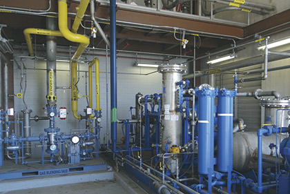 Blended waste gas and natural gas system