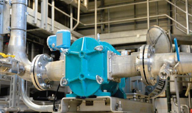Börger's rotary pump
